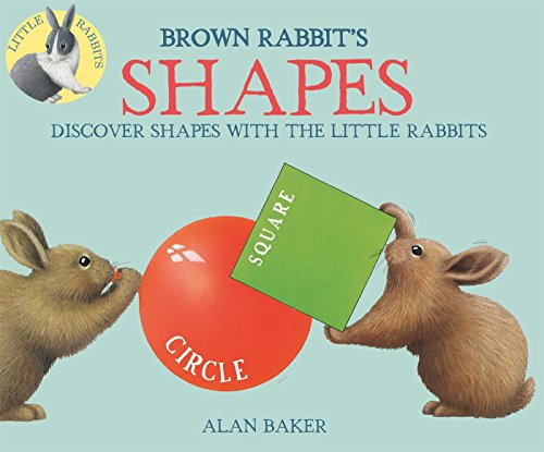 Brown Rabbit's Shapes (Little Rabbit - Brown Little Children Books