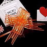 cyclamen9 Pull Bows Organza Ribbon10PCS Great Pew/Party/Christmas/Wedding Gift Wraping (Orange)