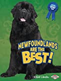 Newfoundlands Are the Best! (The Best Dogs Ever)