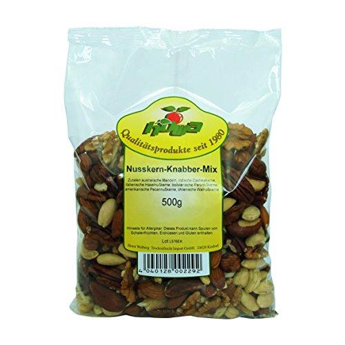 Howa Nusskern Knabber Mix - Nussmischung ohne Salz ohne Zusätze, 1er Pack (1 x 500 g)