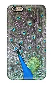 Cute Appearance Cover/tpu JLnACku104rYWDl Peacock Desktop Animal S Case For Iphone 6
