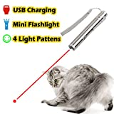 2 in 1 Multi Function Crazy Chase Cat Chaser Toys & Mini Flashlight -Pet Interactive LED Light - Command Light Training Tools - USB Charging