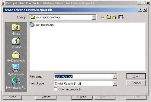 Amazon com: ReCrystallize Pro Web Publishing Wizard for Crystal Reports