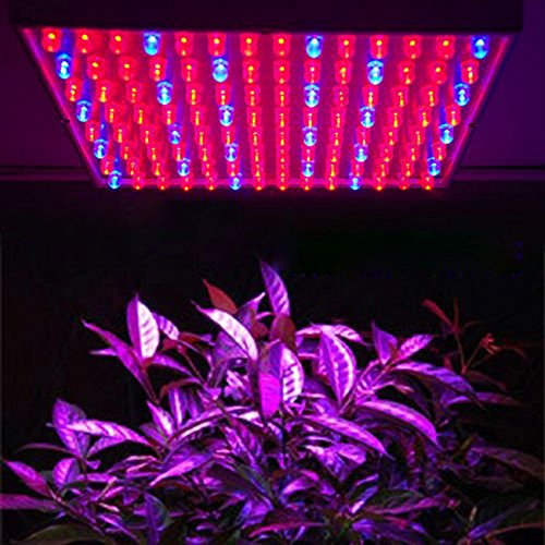 MVPower® 225 LEDs Pflanzenleuchte Pflanzenlampe, 240V, 900lm,15W, Blau Rot Licht für Zimmerpflanzen, Obst Gemüse Greenhouse Glashaus Gewächshaus