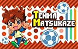 Inazuma Eleven GO pocket tissue cover 2 Shofu Pegasus (japan import) by Ensky