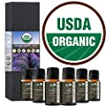 Best Essential Oil 100% Pure Certified Organic Therapeutic Grade