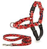PetSafe EWH-C-HC-M/L-POP Easy Walk Chic Harness, Medium/Large, Poppies
