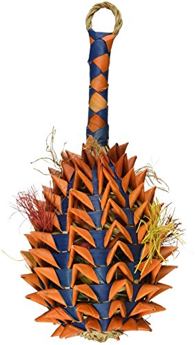 Planet Pleasures Pineapple Foraging Toy, Large]()