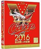 CARP2016熱き闘いの記録 V7記念特別版 ~耐えて涙の優勝麗し~ [Blu-ray]