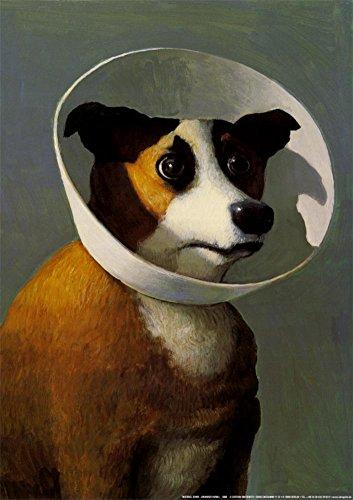 Filmhound Art Poster Print by Michael Sowa