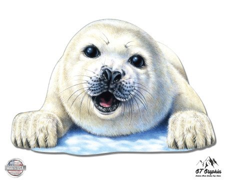 GT Graphics Cute Seal - 3