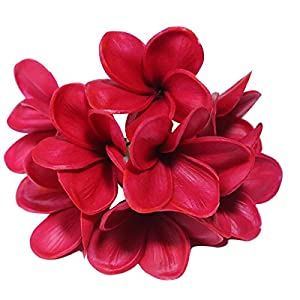 Bunch of 10 PU Real Touch Lifelike Artificial Plumeria Frangipani Flower Bouquets Wedding Home Party Decoration Mother's Day Memorial Day Decoration Gift (Wine Red) 113