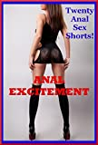 img - for Anal Excitement: Twenty First Anal Sex Erotica Stories book / textbook / text book