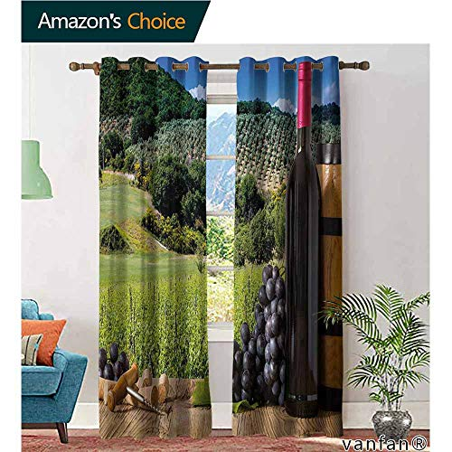 Big datastore Darkening Draperies Curtains Panels,WineIdyllic Tuscany Country Landscape Agriculture Harvest Grape Plantation,2 Panels for Bedroom,Black Green Pale Brown,W108 xL108