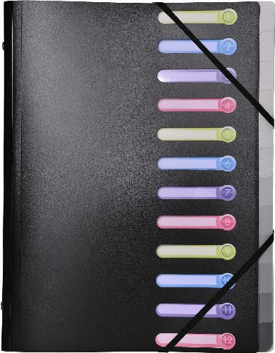 Exacompta 55981E Eckspann-Ordnungsmappe aus PP 500µ mit Gummizug und 3 klappen, 12 fächer mit ausgestanzten index-fenstern blickdicht, format Din A4, schwarz