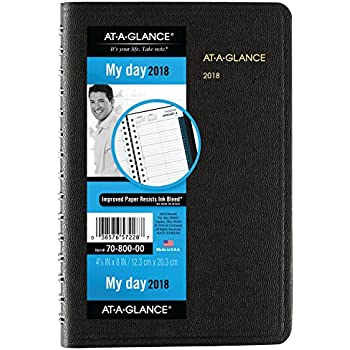 amazon com at a glance daily appointment book planner january