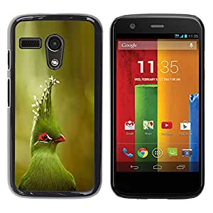 Cubierta protectora del caso de Shell Plástico || Motorola Moto G 1 1ST Gen I X1032 || Tropical Parrot Species Nature @XPTECH