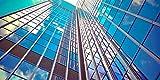 Skyscraper- 2ft x 4ft Drop Ceiling Fluorescent Decorative Ceiling Light Cover Skylight Film