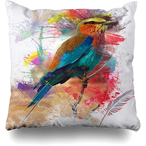 - Throw Pillow Cover Pillows Cases Art Feather Abstract Bird Colorfull Eye Paint Nature Lilac Breasted Roller Artistic Watch Home Decor Design Square 18 x 18 Inch Zippered Cushion Case