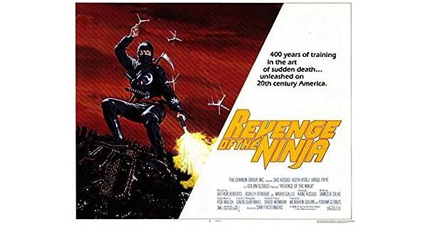 Amazon.com: Revenge of the Ninja POSTER (11