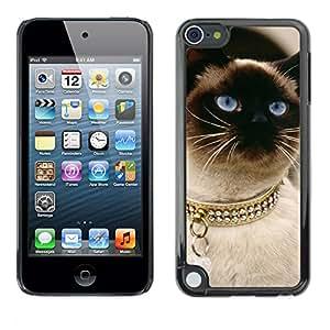 Vortex Accessory Carcasa Protectora Para Apple Ipod Touch 5 - Siamese Thai Cat Balinese Gold Collar -