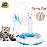 MuMu New Life Pet Cat Electric Toys Cat Interactive Toys Rotating designed Funny Feather Toys For Pet Cats Amusement Track Wheel Toy,Another Gift of a Feather
