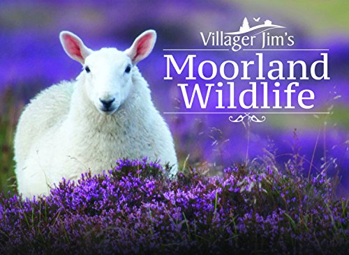 (Villager Jim's Moorland Wildlife)