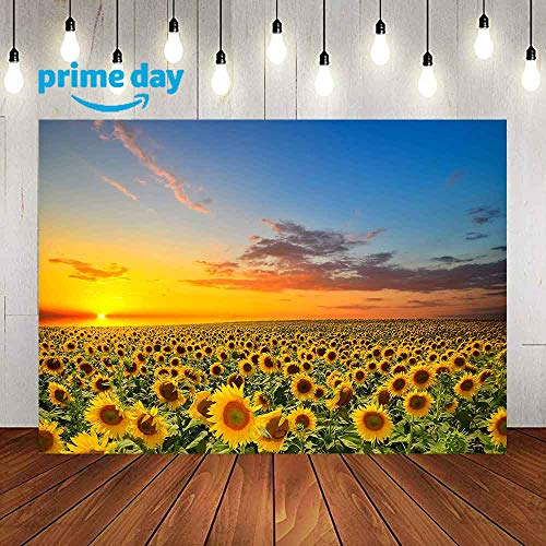 Countryside Wallpaper Mural - LUCKSTY Sunflower Backdrops for Photography 9x6FT Sun Glow Blue Sky Nature Photo Backgrounds for Birthday Wedding Themed Party Wall Paper Studio Props LUGE089