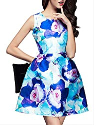 SheIn Women's Blue Round Neck Sleeveless Floral Print Dress