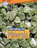 Minerals, Sally M. Walker, 1467700223