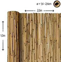 Sol Royal Valla de bambú Protectora SolVision B38 100 x 250 cm (A x L) Estera de privacidad Visual y Viento Natural Balcones terrazas Jardines barandas Cerca con cañas Gruesas: Amazon.es: Hogar