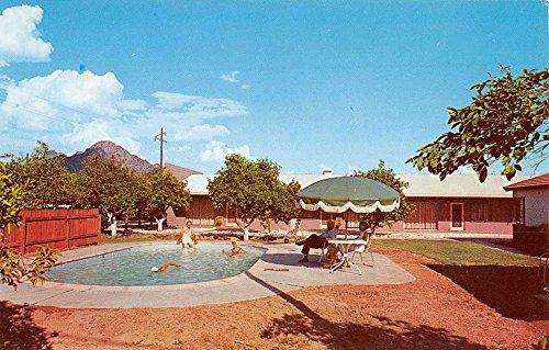 Phoenix Arizona Ocotillo Lodge Pool View Vintage Postcard K35709