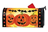 Studio M Halloween Outdoor Mailbox Cover MailWrap - Jack and Friends