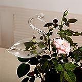 Garden Glass Watering Sprinkler, WensLTD For Garden Plant Watering Device Indoor Automatic Cute Swan Snail Swan Glass
