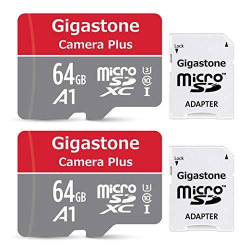 Gigastone 64GB 2-Pack Micro