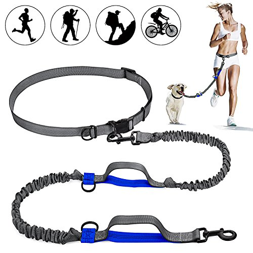 ARW Hands Free Leash, 2 Dog Leashes & Adjustable Waist Belt with Shock Absorbing Bungee up to 150 lbs Leash for Medium Large Dogs