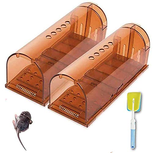 jingtai Humane Smart Mouse Trap, Small Reusable Snap Traps That Work, No Kill Mice Catcher Indoor Outdoor Live Catch and Release for Rodent/Voles/Hamsters/Moles Pack of 2 with Cleaning Brush