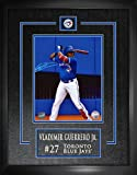 Frameworth Vladimir Guerrero Jr. Signed 8x10 Etched Mat Blue Jays At Bat - Autographed MLB Photos