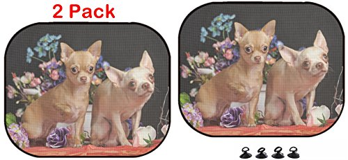Luxlady Car Sun Shade Protector Block Damaging UV Rays Sunlight Heat for All Vehicles, 2 Pack Two Chihuahuas Posing Against The Backdrop of Flowers in Studio Image ID 2589282 ()