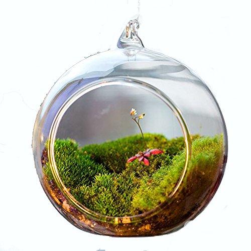aquarium-dcor-ornaments-plastic-plants-decorative-sea-fish-rocks-tank-transparent-ball-globe-shape-c