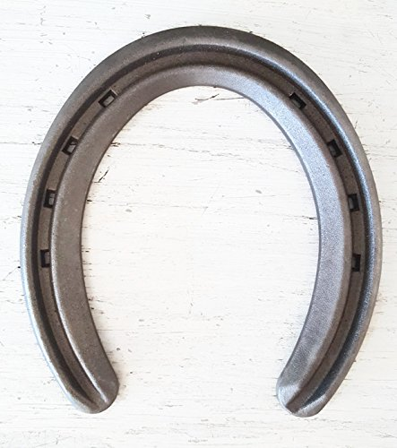 The Heritage Forge - 20 Horseshoes - Lite Rim - Sand Blasted Steel Size 1 by The Heritage Forge