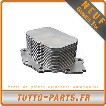 Radiador de aceite Citroen Ford Mazda Mini Peugeot: Amazon.es: Coche y moto