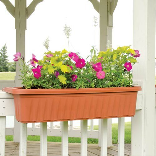 Apollo Adjustable Railing Planter - 32 Inches, Terra Cotta by Apollo
