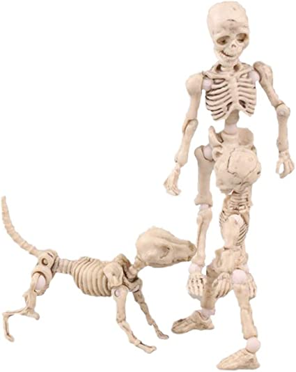 "Child and Dog Skeleton Fully Posable Action Figure Set 2/""-3/"" Set of Mr Bones"