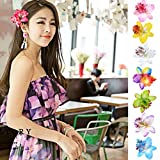 Ikevan Hot Selling Women Jewelry Side Clip Barrette Bohemia Flower Hairpins Hair Accessories for the Beach Vacation (Hot Pink)