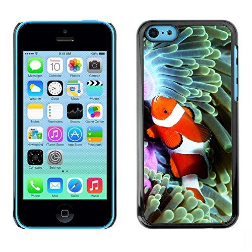 Omega Case PC Polycarbonate Cas Coque Drapeau - Apple iPhone 5C ( Cool Clown Fish In Coral )