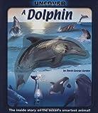 Dolphin, David George Gordon, 1592238793