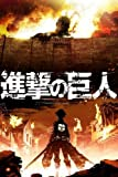 Attack On Titan Japan Anime Nice Silk Fabric Cloth Wall Poster Print (20x13inch)