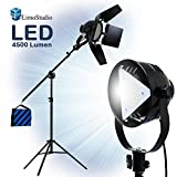 LimoStudio Premium Barn Door LED Accent Light 4500Lm/5700K/50W & Tripod Light Stand, Boom Stand, Weight Bag, Photography Studio, AGG1839