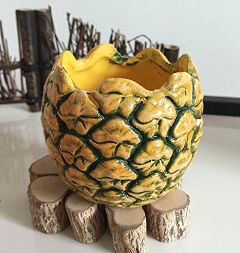 Pineapple Planter - 4